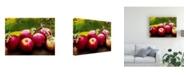 "Trademark Global Rachel Perry Cuisine Canvas Art - 36.5"" x 48"""