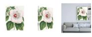 "Trademark Global Vision Studio Floral Beauty IV Canvas Art - 19.5"" x 26"""