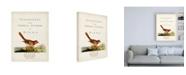 "Trademark Global John Latham General Synopsis of Birds Canvas Art - 19.5"" x 26"""