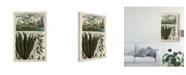 "Trademark Global Vision Studio Journal of the Tropics III Canvas Art - 15"" x 20"""