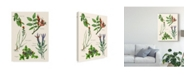 "Trademark Global Melissa Wang Sweet Assemblage II Canvas Art - 20"" x 25"""