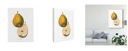 """Trademark Global Wild Apple Portfolio Tournay on White Canvas Art - 15"""" x 20"""""""
