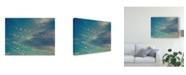 "Trademark Global Sonja Quintero Bokeh Stars I Canvas Art - 15"" x 20"""