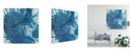 "Trademark Global Chariklia Zarris Crystalline IV Canvas Art - 15"" x 20"""