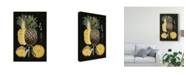 "Trademark Global Naomi Mccavitt Graphic Pineapple Botanical Study II Canvas Art - 20"" x 25"""