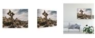 "Trademark Global Rachel Perry Views of Joshua Tree VIII Canvas Art - 15"" x 20"""