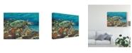 "Trademark Global Carolee Vitaletti Deep Sea Swimming II Canvas Art - 15"" x 20"""