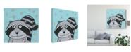 "Trademark Global Tatijana Lawrence Super Animal Raccoon Canvas Art - 20"" x 25"""