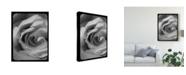 "Trademark Global Judy Stalus Rose Spiral I Canvas Art - 20"" x 25"""