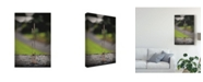 "Trademark Global Christine Sainte-Laudy Wild and Proud Canvas Art - 20"" x 25"""