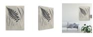 "Trademark Global Vision Studio Vintage Fern Study II Canvas Art - 20"" x 25"""