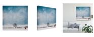 "Trademark Global Philippe Sainte-Laudy The Red Umbrella Landscape Canvas Art - 15"" x 20"""