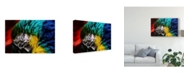 "Trademark Global Pixie Pics Macaws Eye Canvas Art - 37"" x 49"""