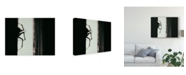 "Trademark Global Pixie Pics Spider 3 Canvas Art - 37"" x 49"""