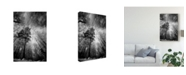 """Trademark Global Philippe Sainte-Laudy Cold Vision Canvas Art - 20"""" x 25"""""""