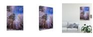 "Trademark Global Philippe Sainte-Laudy Let it Snow Trees Canvas Art - 37"" x 49"""