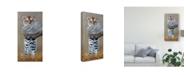 "Trademark Global Pip Mcgarry Tiger Cub Standing Up Canvas Art - 37"" x 49"""