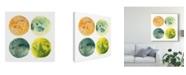"Trademark Global June Erica Vess Planetary II Canvas Art - 15"" x 20"""