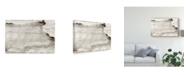 "Trademark Global Renee W. Stramel Arroyo Canvas Art - 20"" x 25"""