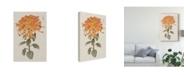 "Trademark Global Vision Studio Ua Ch Vibrant Mums I Canvas Art - 20"" x 25"""