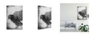 "Trademark Global Ingrid Blixt B&W Flight V Canvas Art - 37"" x 49"""