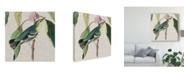 """Trademark Global John James Audubon Avian Crop IV Canvas Art - 15"""" x 20"""""""