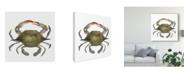 "Trademark Global Emma Scarvey Watercolor Crab II Canvas Art - 20"" x 25"""