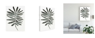 "Trademark Global June Erica Vess Foliage Fossil VII Canvas Art - 37"" x 49"""