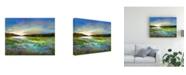 "Trademark Global Sheila Finch Radiant Evening Canvas Art - 20"" x 25"""