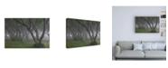 "Trademark Global Ryu Shin Woo Korean Hornbeam Canvas Art - 15.5"" x 21"""