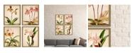 "Paragon Orchids Framed Wall Art Set of 4, 21"" x 17"""