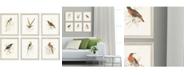 """Paragon Hummingbirds Framed Wall Art Set of 6, 13"""" x 11"""""""