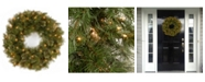 """National Tree Company 24"""" Wispy Willow Wreath with Clear Lights"""