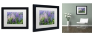 "Trademark Global Cora Niele 'Blue Pink Lupine Flower Field' Matted Framed Art - 11"" x 14"" x 0.5"""