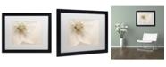 "Trademark Global Cora Niele 'Hellebore Christmas Rose' Matted Framed Art - 16"" x 20"" x 0.5"""