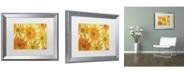 "Trademark Global Cora Niele 'Orange Daisies' Matted Framed Art - 20"" x 16"" x 0.5"""