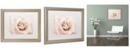 "Trademark Global Cora Niele 'Peach Pink Rose' Matted Framed Art - 20"" x 16"" x 0.5"""