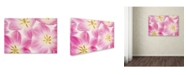 "Trademark Global Cora Niele 'Three Cerise Pink Tulips' Canvas Art - 32"" x 22"" x 2"""