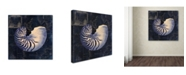"Trademark Global Color Bakery 'Maritime Blues V' Canvas Art - 24"" x 2"" x 24"""