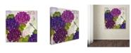 "Trademark Global Color Bakery 'Gaia II' Canvas Art - 14"" x 2"" x 14"""