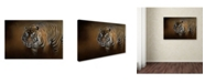 "Trademark Global Jai Johnson 'Bengal Stare' Canvas Art - 47"" x 30"" x 2"""