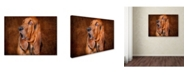 """Trademark Global Jai Johnson 'Bloodhound Portrait' Canvas Art - 19"""" x 14"""" x 2"""""""