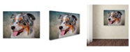 "Trademark Global Jai Johnson 'Blue Merle Australian Shepherd Portrait' Canvas Art - 24"" x 18"" x 2"""