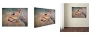 "Trademark Global Jai Johnson 'Gray Squirrel Portrait' Canvas Art - 47"" x 35"" x 2"""