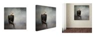 "Trademark Global Jai Johnson 'High Perch Bald Eagle' Canvas Art - 35"" x 35"" x 2"""