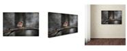 "Trademark Global Jai Johnson 'Last Day Home Bluebird' Canvas Art - 47"" x 30"" x 2"""