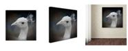 "Trademark Global Jai Johnson 'Peacock 9' Canvas Art - 35"" x 35"" x 2"""