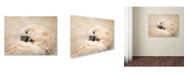 "Trademark Global Jai Johnson 'Preening Umbrella Cockatoo' Canvas Art - 32"" x 24"" x 2"""
