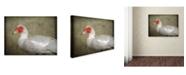 "Trademark Global Jai Johnson 'Red Head Muscovy Duck' Canvas Art - 19"" x 14"" x 2"""
