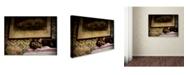 "Trademark Global Jai Johnson 'Soft Place To Fall' Canvas Art - 19"" x 14"" x 2"""